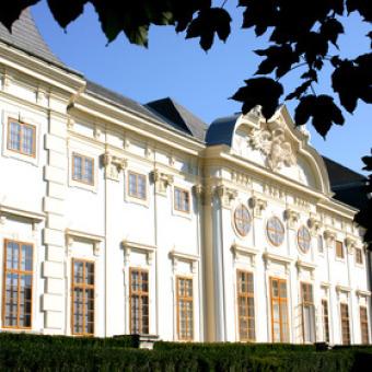 Schloss Halbturn Pinot Noir 2004