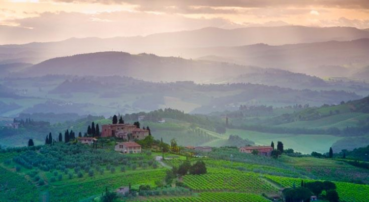 Paket des Monats: Toskana gereift