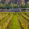Im Fokus: Weingut F.X. Pichler – 1000 Flaschen, 30 Jahrgänge