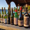 Nachlese Syrah Verkostung am Attersee