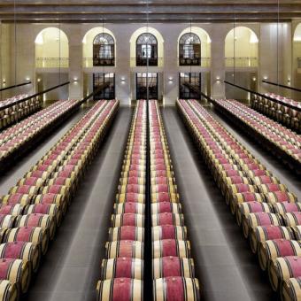 Wein des Monats: Château Montrose 2005