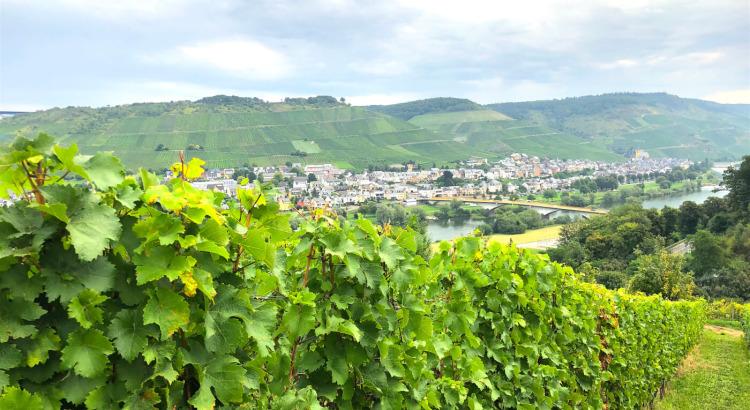trinkreif unterwegs im Weinland Deutschland