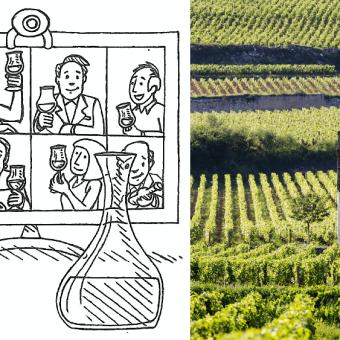 trinkreif Tele-Tasting Workshop Burgund