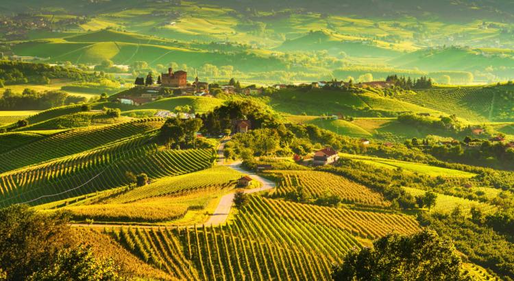 Schwerpunktpreisliste Piemont
