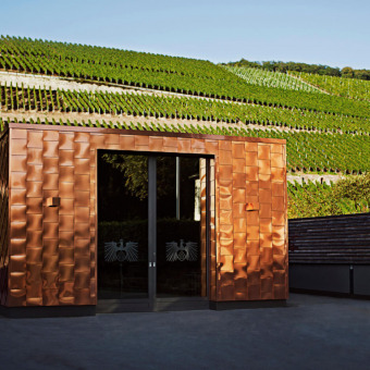 Unsere Partnerwinzer über die wichtigsten deutschen Weinregionen